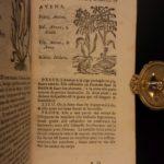 1726 Flowers & Plants of Europe BOTANY Caspar Bauhin Pinax Illustrated 2v SET