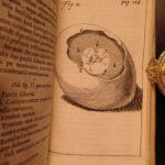 1674 William Harvey Medicine Generation Childbirth Embryology OBGYN Illustrated