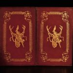 1847 British Highland Sports Game Hunting Illustrated Birds Dogs CASTLES 2v