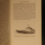 1862 Volcano Geology Volcanology Vesuvius Eruption Pompeii Illustrated Scrope
