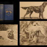 1891 1st ed Book of DOGS Breeding Illustrated Puppies George Shields American