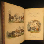 1870 1ed Domesticated Animals Mudie FARMING Agriculture Horses Color Illustrated