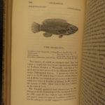 1859 British Fish Illustrated Woodcut Engravings Natural History Yarrell 2v SET