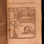 1680 Mercurio Obstetrics Gynecology Commare o Raccoglitrice Medicine Childbirth