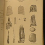 1852 New York Paleontology Natural History Hall Illustrated Fossils & Geology