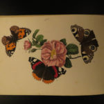 1844 Butterflies Les Papillons Natural Science Lepidopterology Color Illustrated