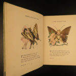 1914 1ed Butterfly Babies Book Gordon Ross Children Literature Color Illustrated