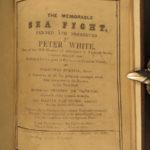 1649 1ed Peter White Sea Fight Royal Navy Calais Spanish Armada Dutch Downes