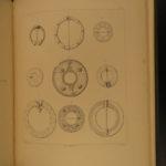 1893 1ed Anglo-Saxon ART & Industry Medieval Britain Saxon Pottery England Baye