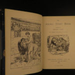 1896 1st ed Andrew Lang Animal Story Book Illustrated Lions Dogs Fine Binding