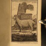 1769 Buffon Illustrated DOGS Cats Deer Angora Sheep Goats Animals Natural History