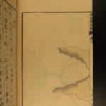 1859 Japanese Medicine & Surgery Honma Soken Growths COLOR Illustrations Japan