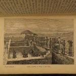 1878 1ed INDIA Sport Nepal Frontier TIGER HUNTING & Indigo Planting BIG GAME