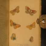 1835 1ed BUTTERFLY Natural History British Butterflies Duncan Color Illustrated