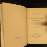 1836 Jardine Butterflies Entomology Lepidopterology EXQUISITE Moths Sphinxes