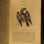 1834 1st ed BIRDS Feathered Tribes of Britain Mudie Ornithology Illustrated 2v
