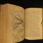 1851 Napoleon Peninsular War Napier MAPS French Revolution SPAIN 6v