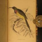 1843 Jardine BIRDS Naturalist Ornithology Hummingbirds Sunbirds Illustrated
