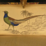 1834 Jardine BIRDS Ornithology Ireland & Britain Illustrated Heron Egret Quail