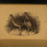 1868 HUNTING & Fishing Frank Forester Field Sports Herbert Illustrated 2v