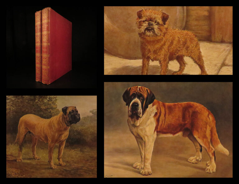 Image of 1911 1ed Book of the DOG British Dogs Illustrated Pomeranians Cynology Leighton
