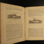 1784 Complete Angler Fishing Hunting Angling Fish Trout Cotton Walton Hawkins