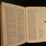 1736 Medicine & Pharmacy Pharmacopoeia Drugs English Medical Lexicon John Quincy