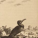 1749 1ed Voyages in CHINA Johan Nieuhof Quanguamiau Pagoda IDOLS Illustrated