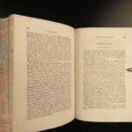 1857 Charlotte Bronte Jane Eyre & Villette Gender Roles Feminism Currer Bell